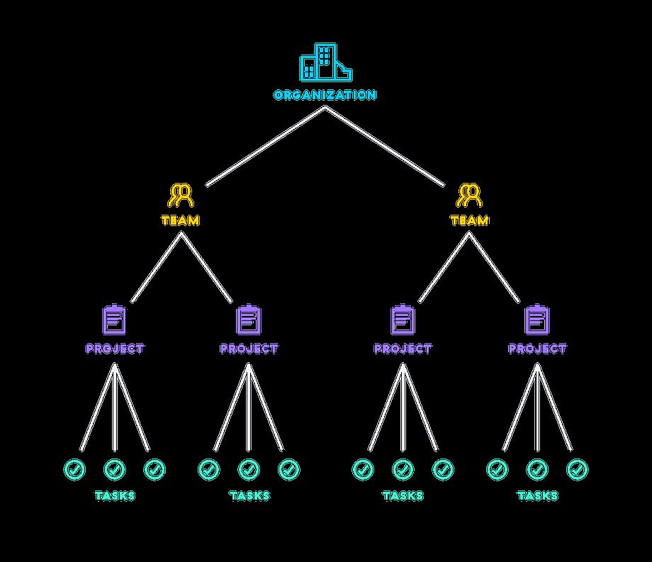 asana organisation