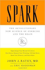 Spark Book Summary and PDF